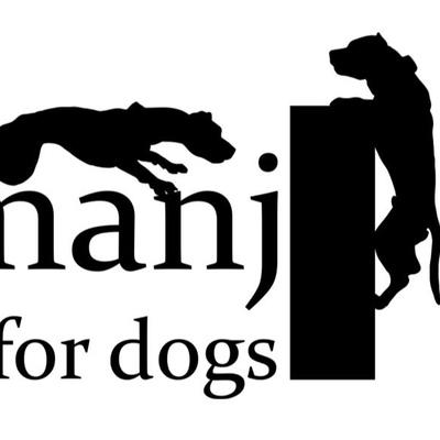 Jumanji Hall-For-Dogs, Тюмень