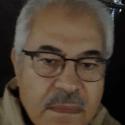 Alaaudin El-Attar, Cairo