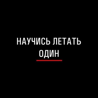 Вася Огуречкин, Сургут